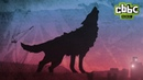 Wolfblood Brand New Opening Titles Series 4