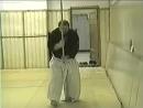 9 упражнение для примерной тренировки АЙКИ ДЗЁ для начинающих Упражнение с ДЗЁ из ХАССО КАМАЭ с выкриком Москва 2001