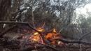 Jibbon fire jeremy hegge