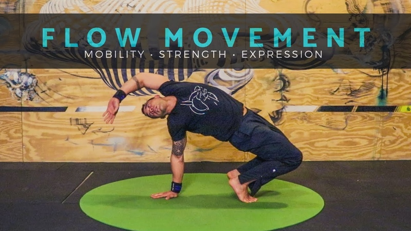 LEARN TO FLOW: Movement Class for Mobility Strength [Yoga / Primal Movement / Animal Flow]