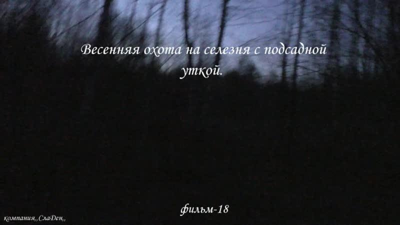 Весенняя охота на селезня с подсадной уткой.18.