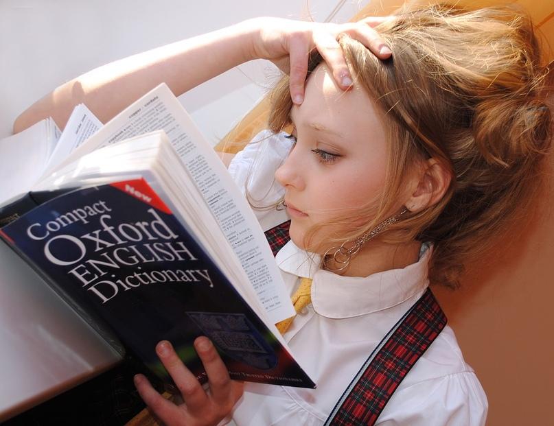 Помощь начинающему преподавателю, изображение №4