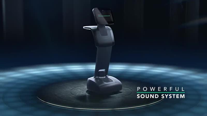Temi персональный робот