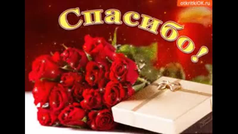 Im-upload-video-1566138717493.mp4