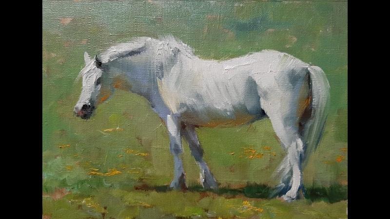 Рисуем лошадь. Мастер-классы Вугара Мамедова
