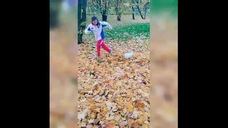 Золотая осень!Прогулка с Лондой
