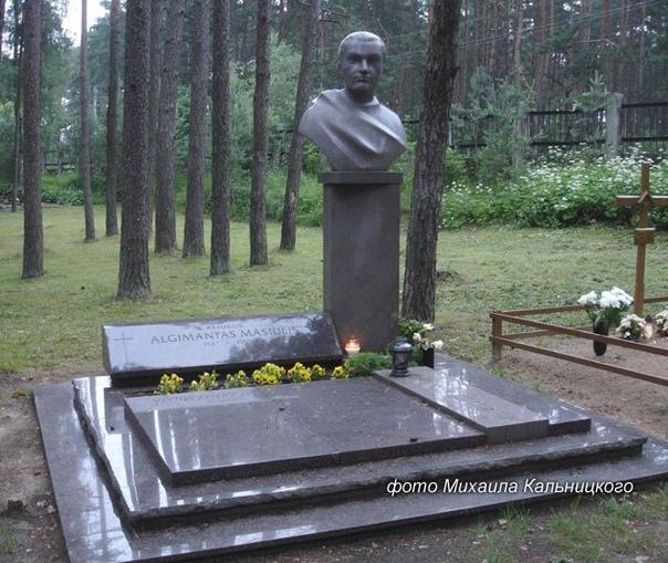 """""""ЗЛОДЕЙ"""" АЛЬГИМАНТАС МАСЮЛИС"""
