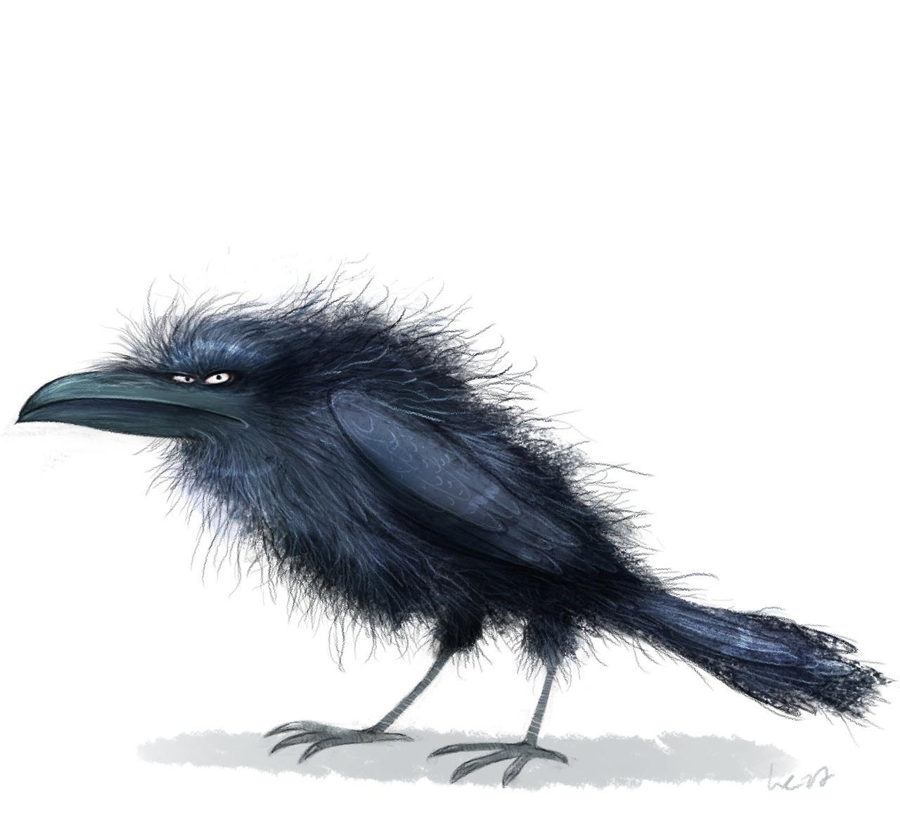 Смешные рисунки вороны, днем рождения
