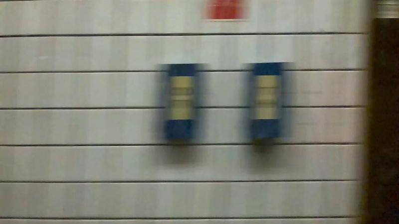 Крещатик (Хрещатик) - Академгородок (Академмістечко)