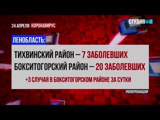 Коронавирус: информация по Бокситогорскому району на 24 апреля