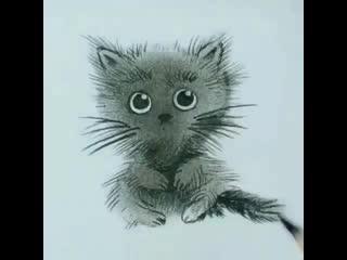 Милый усатый котенок