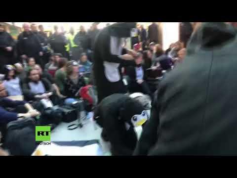 LIVE Klimaaktivisten besetzen den Flughafen Tegel in Berlin