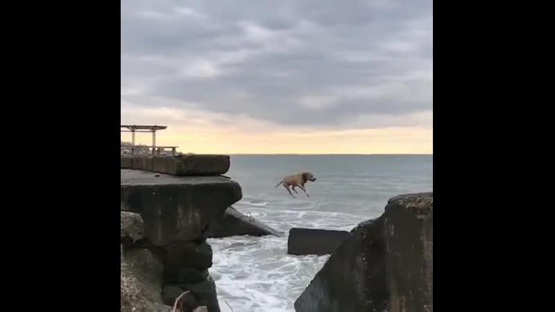 Рисковый