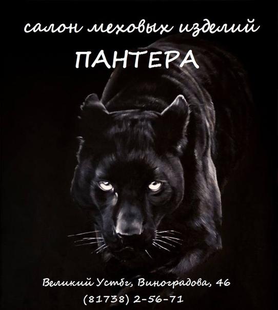 Обои На Телефон Черная Пантера