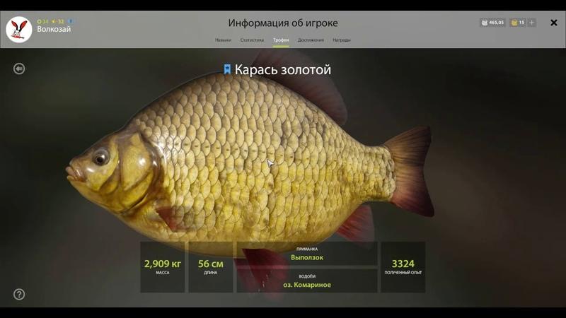 Русская Рыбалка 4 Комариное закрыты все трофеи