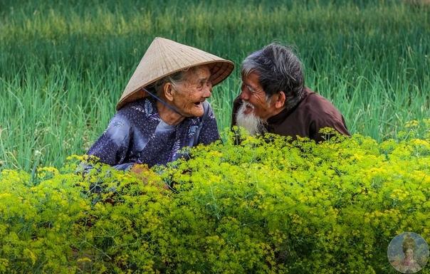 Фотографов спросили, как выглядит любовь и вот, что получилось у мастеров визуализации счастья