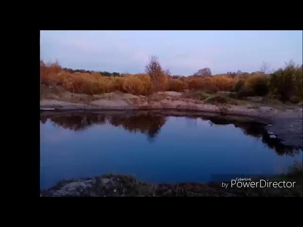 Золотая осень. Автор видео-ролика Фефелова Олеся.