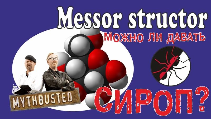 Муравьи Messor structor и миф о сиропе