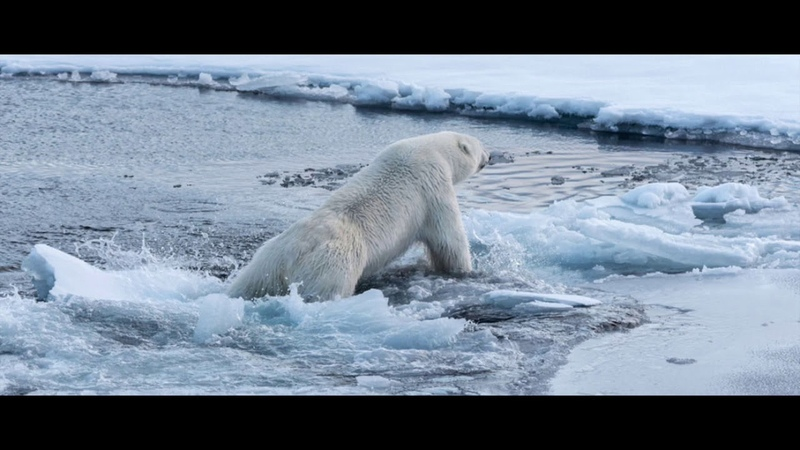 Tagesdosis 13 12 2019 Fake Klimarettung zur Rettung der Eliten