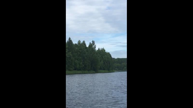 Берега реки Водлы