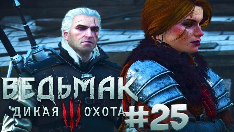 Прохождение Ведьмак 3: Дикая Охота (The Witcher 3: Wild Hunt) — Часть 25: Керис И Демон Хим
