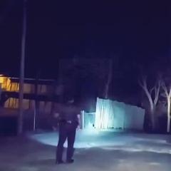Моя полиция защищает меня!  #coub, #коуб