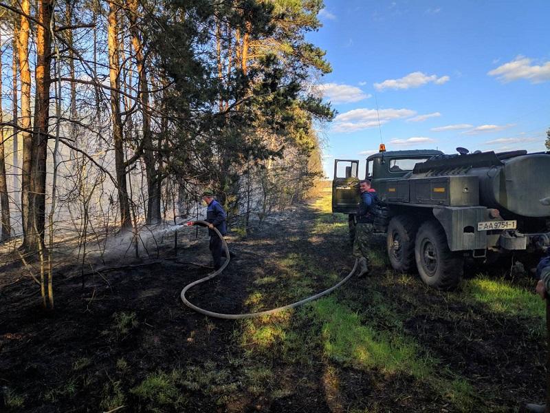 """В Малоритском районе благодаря """"поддержке с воздуха"""" предотвратили возгорание леса"""