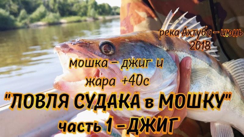 ЛОВЛЯ СУДАКА в МОШКУ 20 июня рыбалка 2018 ловля судака на джиг на силикон GERMAN