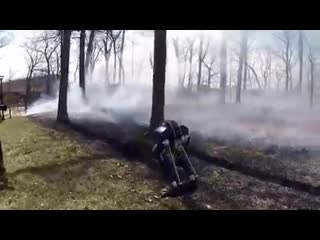 Робот cassie преодолевает преграды.