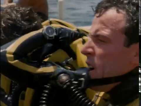 Жак Ив Кусто Акулы 1967 Подводная одиссея команды Кусто