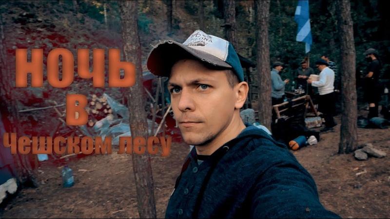 Ночь В Чешском Лесу. Panasonic lumix g80/g85