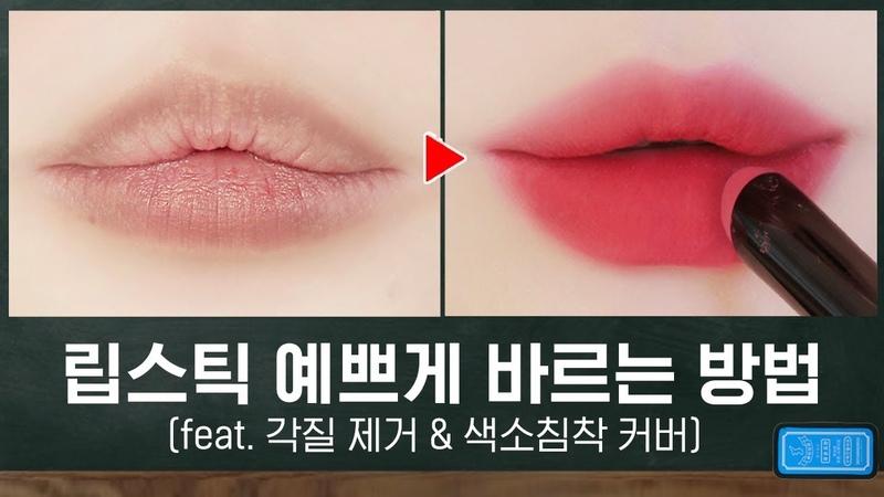 ⭐️립스틱 바르기 총정리⭐️ 각질제거 / 색소침착 / 제형별 립스틱 예쁘게 4
