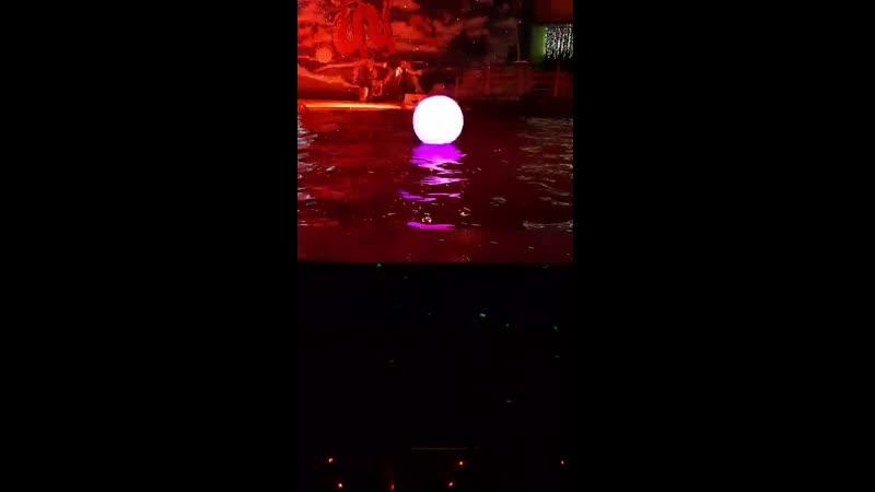 Video 55a7b793d968cf8b972683d09c134a91
