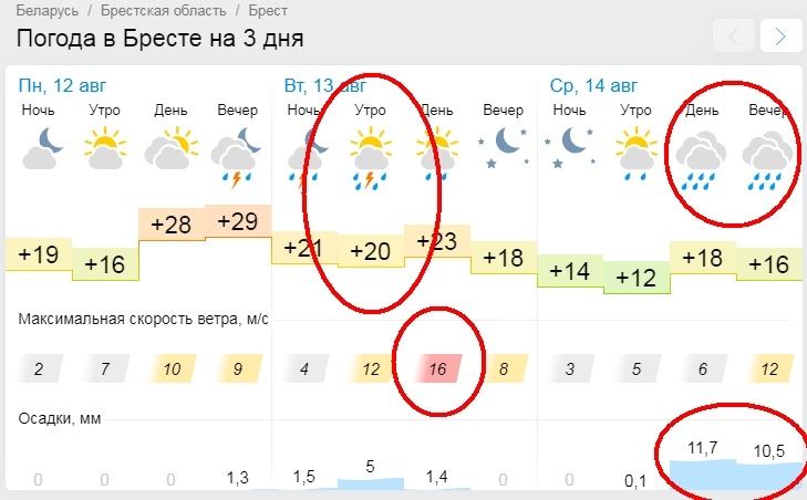 Погода в Бресте на два дня испортится - нам обещают ливни и ветер (оранжевый уровень)