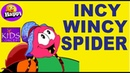 INCY WINCY SPIDER with Lyrics