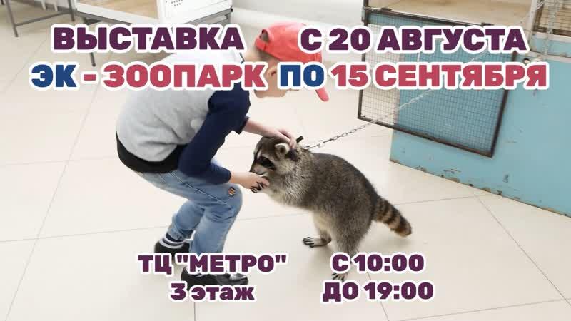 Эк-Зоопарк   ТЦ Метро, 3 Этаж