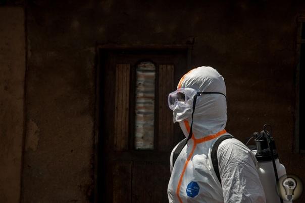 ЦИФРЫ: ЭБОЛА, ЭБОЛА, ПЕРЕЙДИ НА ДРУГОГО Современная чума, Эбола остается одним из самых убийственных вирусов на планете. Крупнейшая в истории эпидемия Эболы длилась 25 месяцев с 2014 по 2016