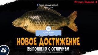 Если любишь — Отпусти • Трофей. Карп Чешуйчатый • Driler — Русская рыбалка 4