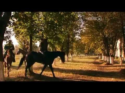 Фильм «Формула Анилина» 12