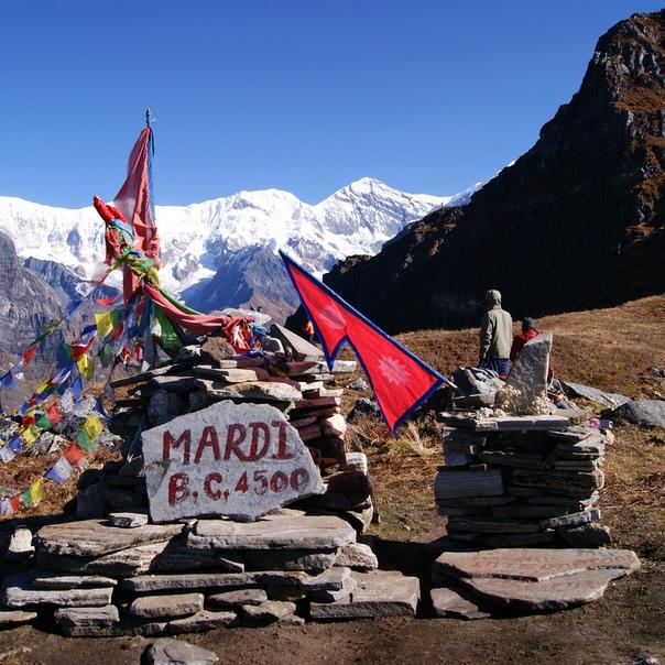 большому сожалению, фото билета в непал амстаффов коренастый корпус