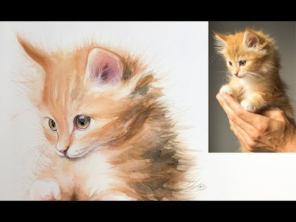 Cat Painting in Watercolor Demo Real Time on Patreon