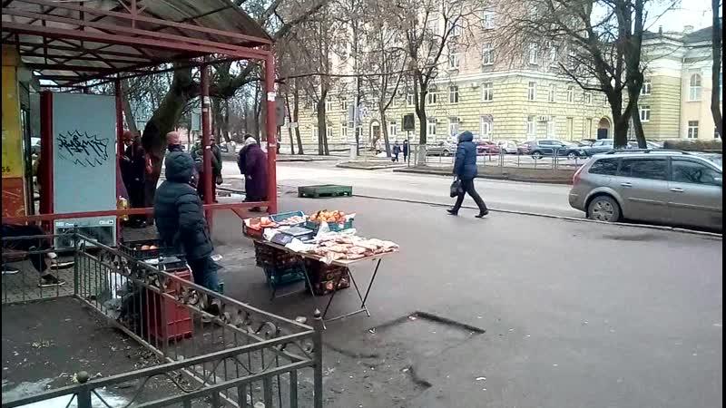 Уличная торговля в Великом Новгороде стала шагово доступной.