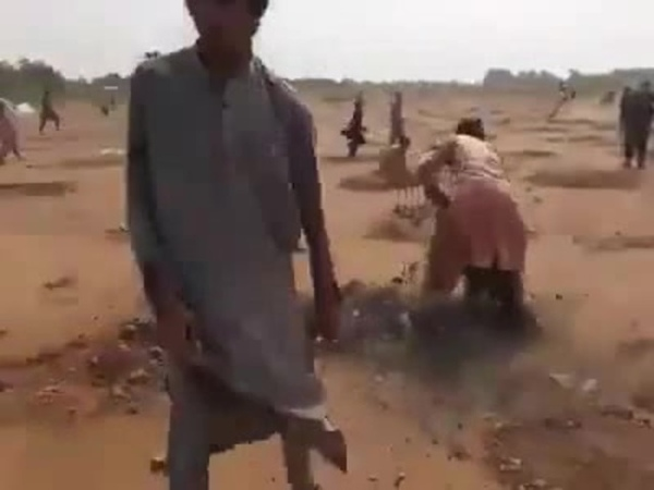 Khyber men adjust roots bloody roots during government's plantation drive deliberately · coub коуб