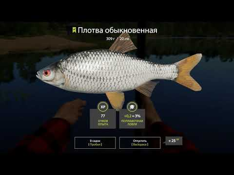 Russian Fishing 4 Рыбалка с лодки на озере Комариное