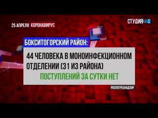 Коронавирус: информация по Бокситогорскому району на 25 апреля