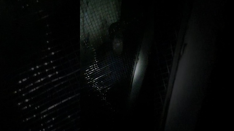 Девочка из темноты