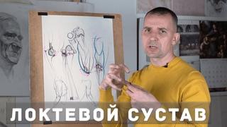 Локтевой сустав - А. Рыжкин