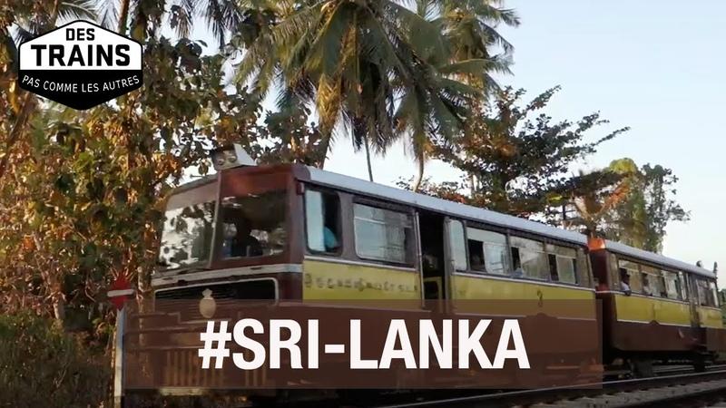 Sri Lanka Des trains pas comme les autres documentaire voyage