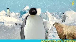 """Почему пингвины не мерзнут босиком? (мультфильмы для умных детей """"Формула Ума!"""")"""