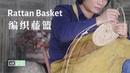 Handmade Rattan Basket Pick Rosa Laevigata to Make Fruit Wine丨编织一个藤篮装满刚采摘的金樱子,酿一壶可口的26